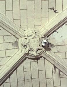 Saint-Benoit (Poitiers), abbaye Saint-Benoit, chapelle seigneuriale, clef de voûte armoriée.