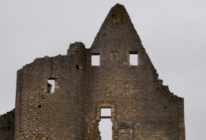 Angles-sur-l'Anglin, château, donjon et tour avec armoiries de Hugues de Combarel (armoirie 10, 11)