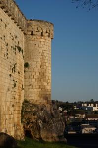 Poitiers, remparts sud, tour de l'Oiseau.